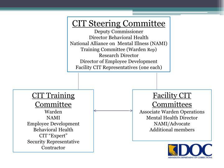 CIT Steering Committee