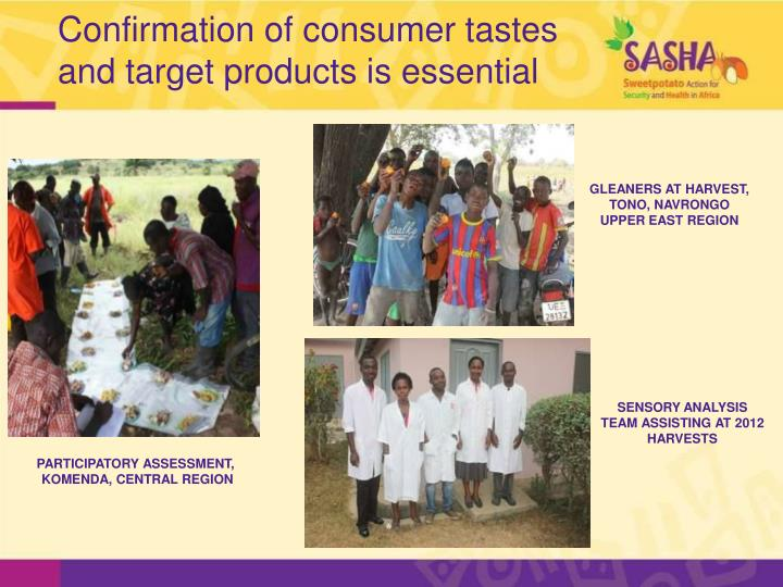 Confirmation of consumer tastes and target products is essential