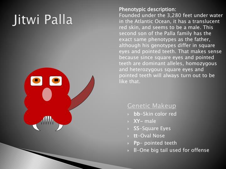 Phenotypic description: