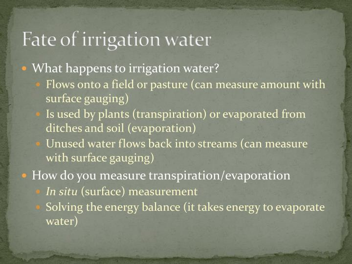 Fate of irrigation water