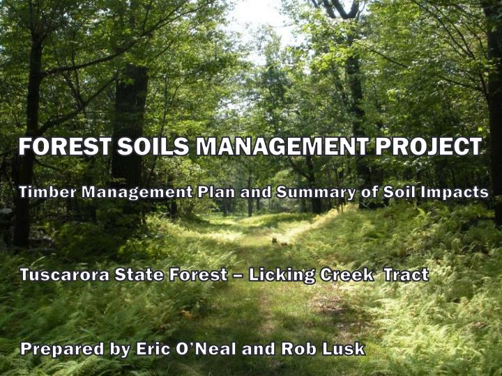 Forest soils management project