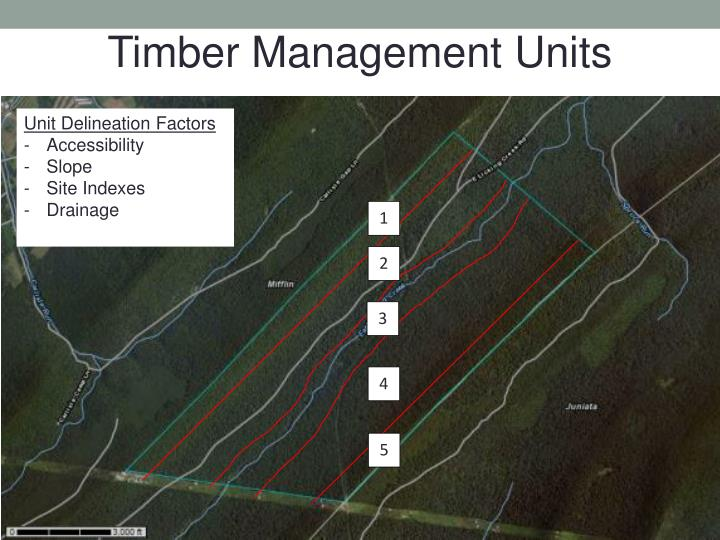 Timber Management Units