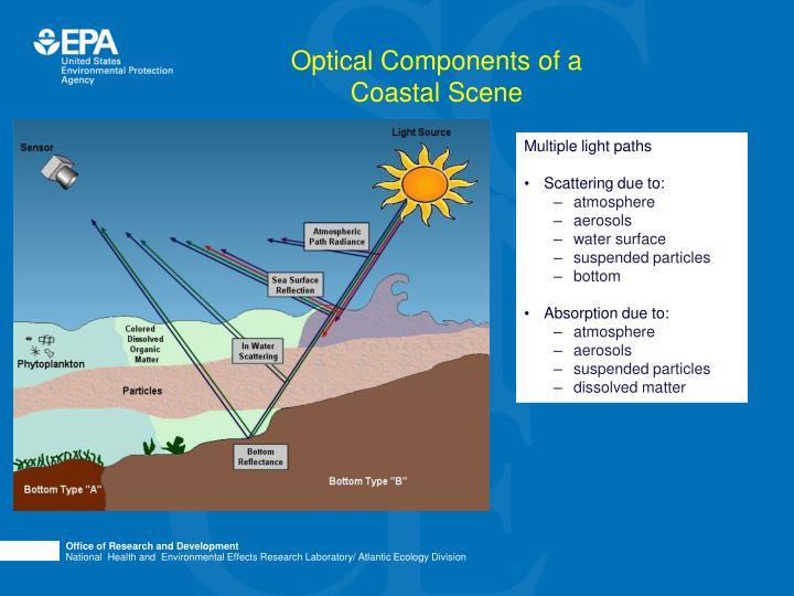 Optical Components of a Coastal Scene