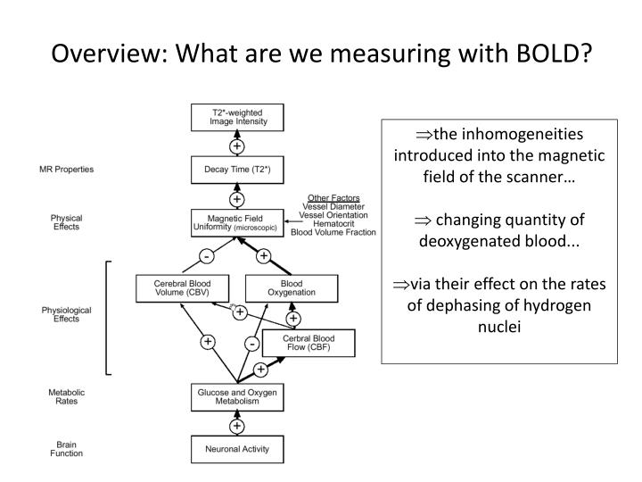 Overview: What are we measuring with BOLD?