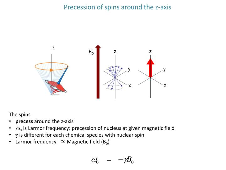 Precession of spins around the