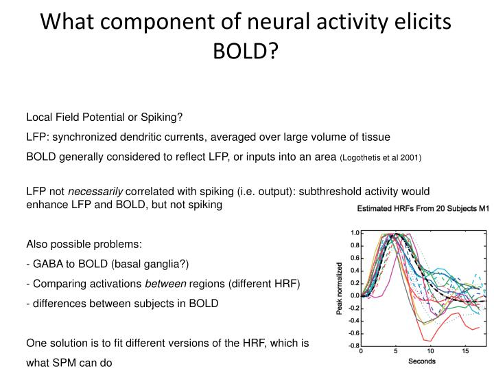 What component of neural activity elicits BOLD?
