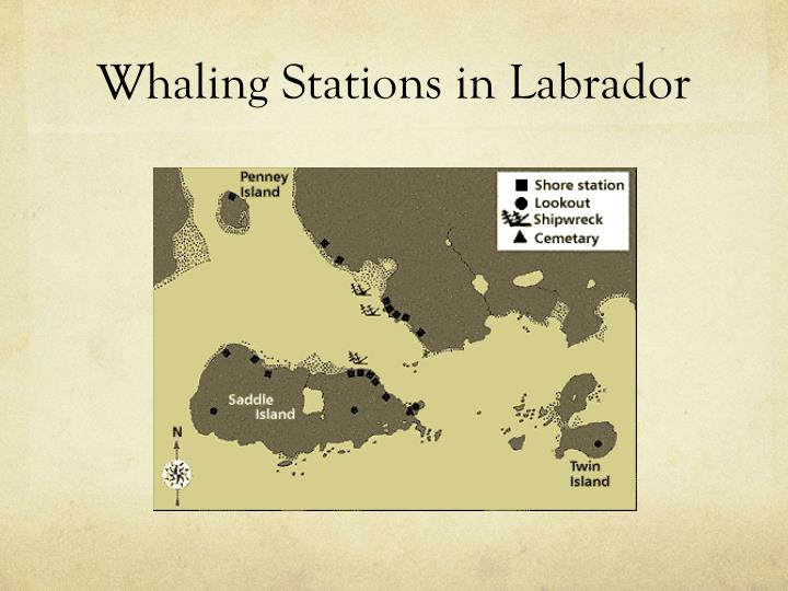 Whaling Stations in Labrador