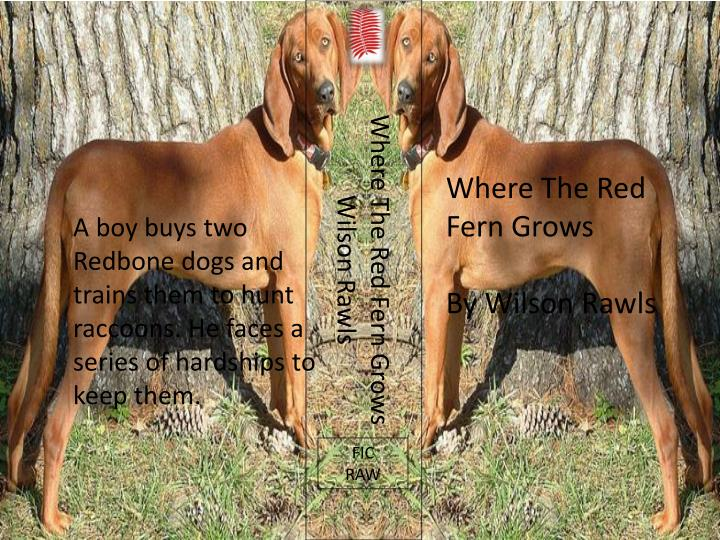 where the red fern grows persuasive essay Wilson rawls lesson plans and teaching resources for where the red fern grows - free english learning and teaching resources from varsity tutors.
