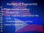 anatomy of fingerprints2