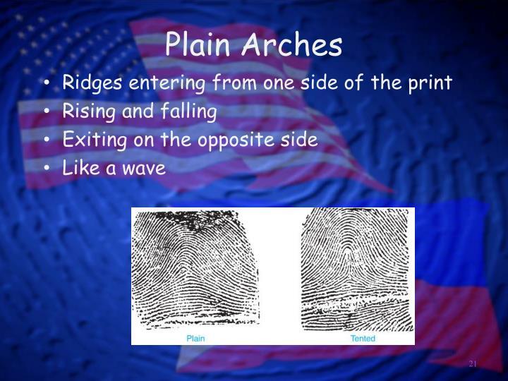 Plain Arches