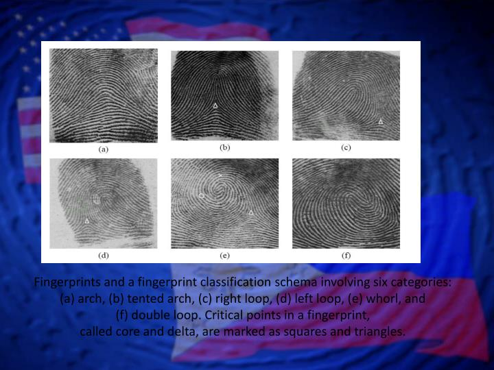 Fingerprints and a fingerprint classification schema involving six categories: (a) arch, (b) tented arch, (c) right loop, (d) left loop, (e) whorl, and