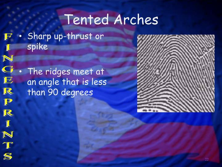 Tented Arches