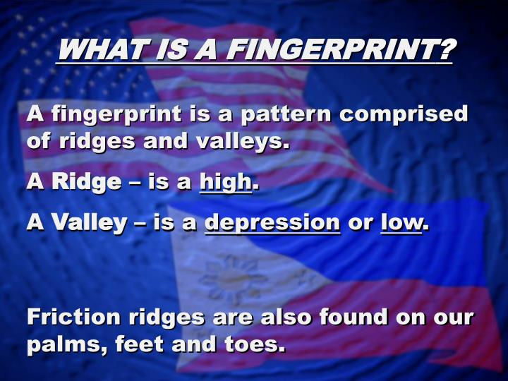 WHAT IS A FINGERPRINT
