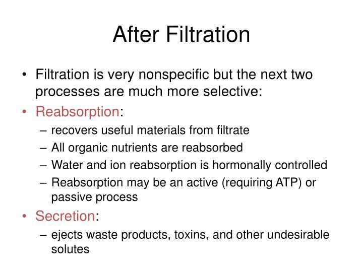 After Filtration