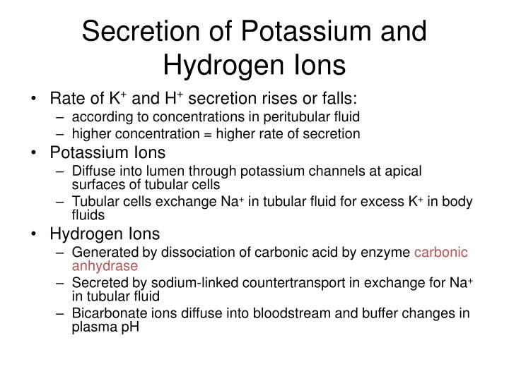 Secretion of Potassium and Hydrogen Ions