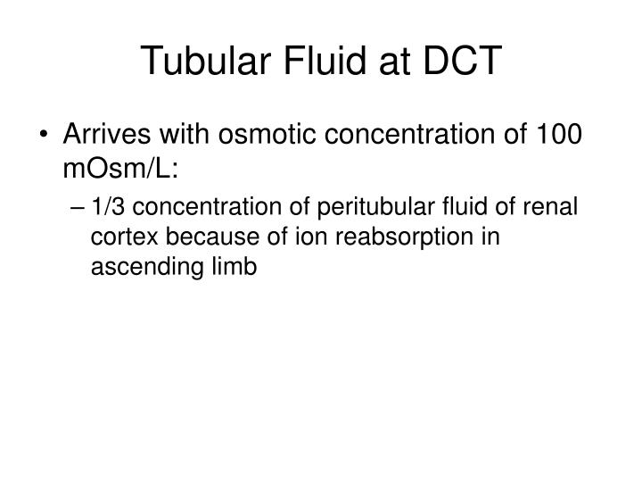 Tubular Fluid at DCT