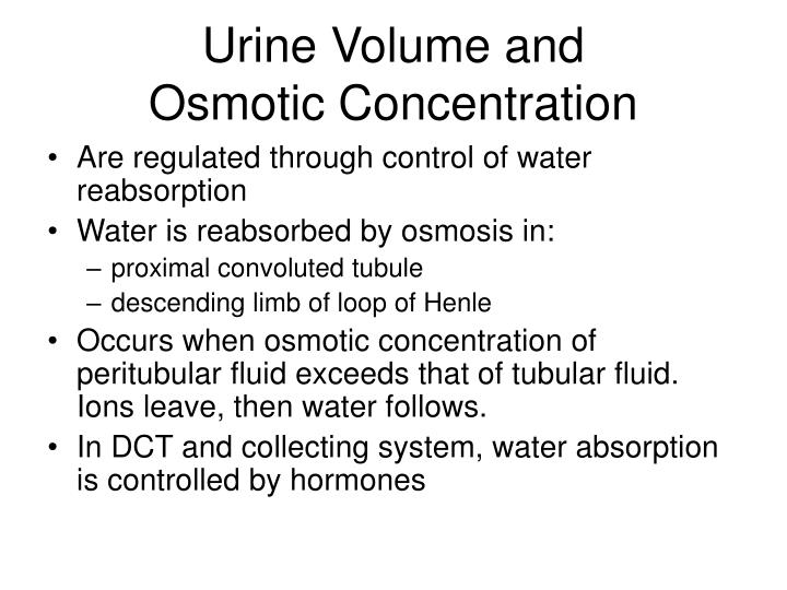 Urine Volume and