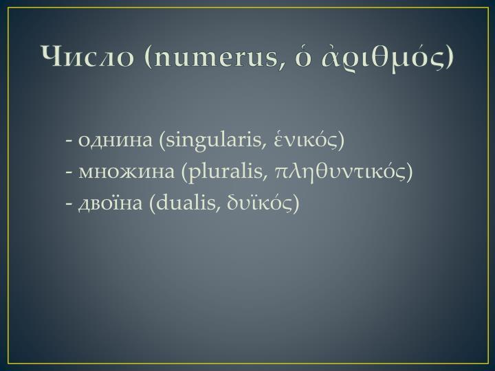 Число (