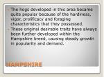hampshire1