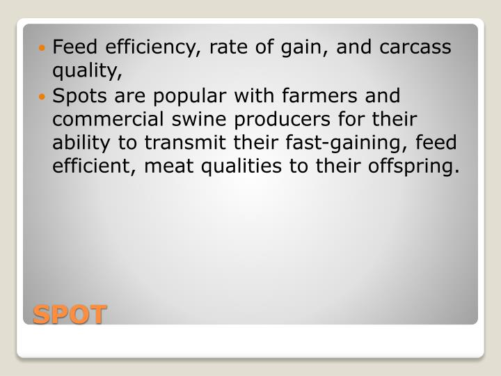 Feed efficiency, rate of gain, and carcass quality,