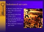 indentured servants