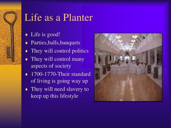 Life as a Planter