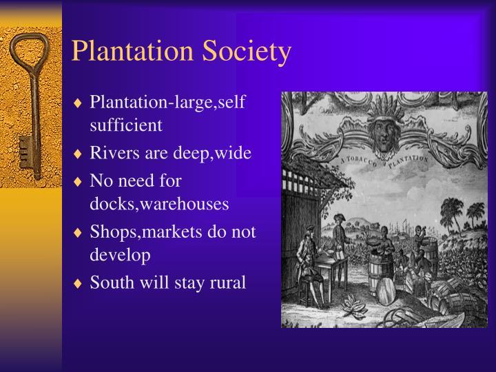 Plantation Society