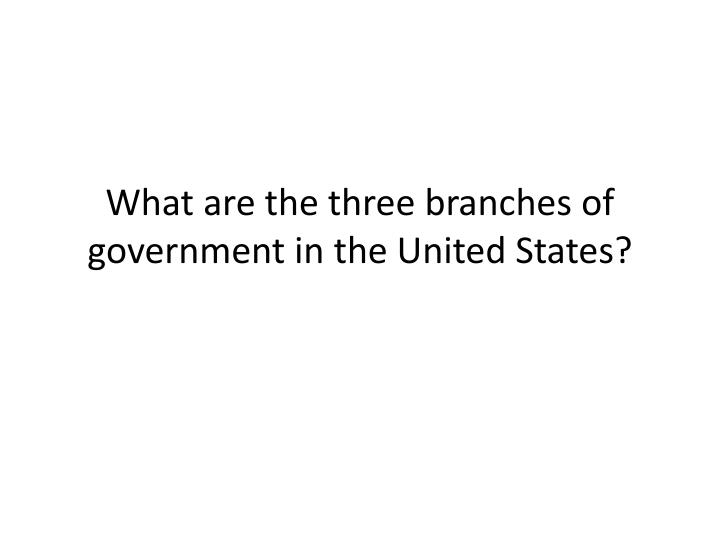 What are the three branches of government in the United States?