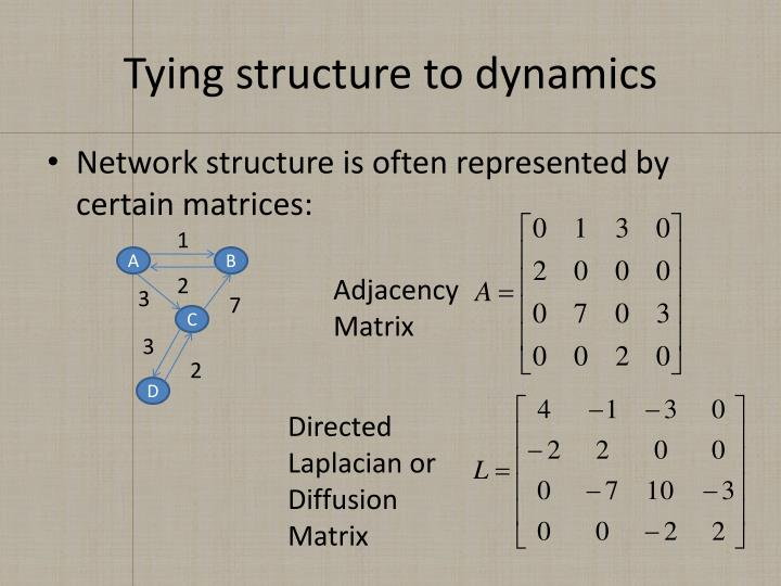 Tying structure to dynamics
