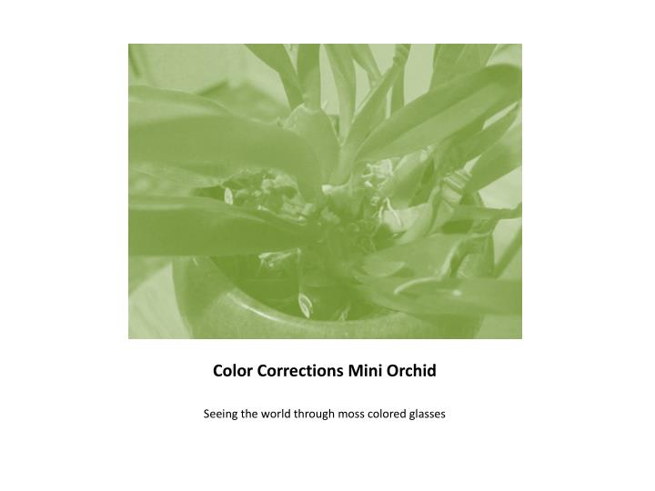 Color Corrections Mini Orchid