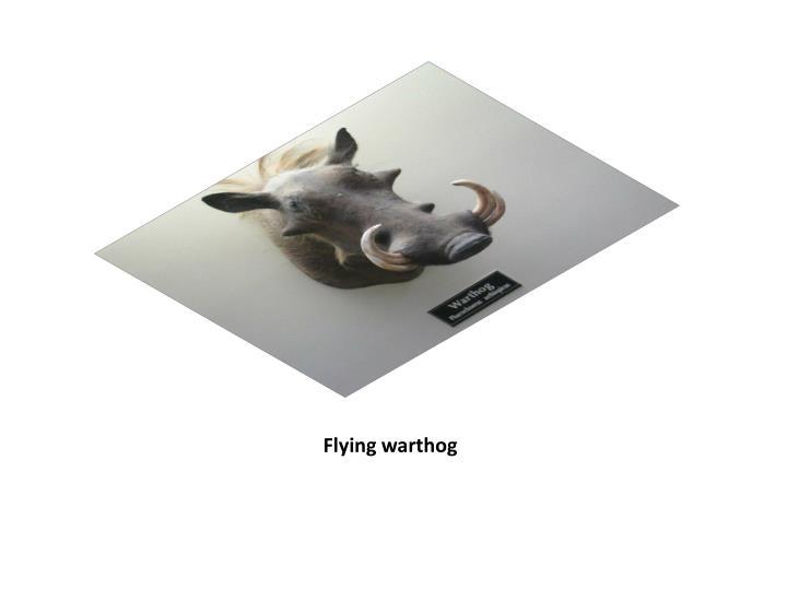 Flying warthog