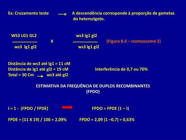 Ex: Cruzamento teste                      A descendência corresponde à proporção de gametas