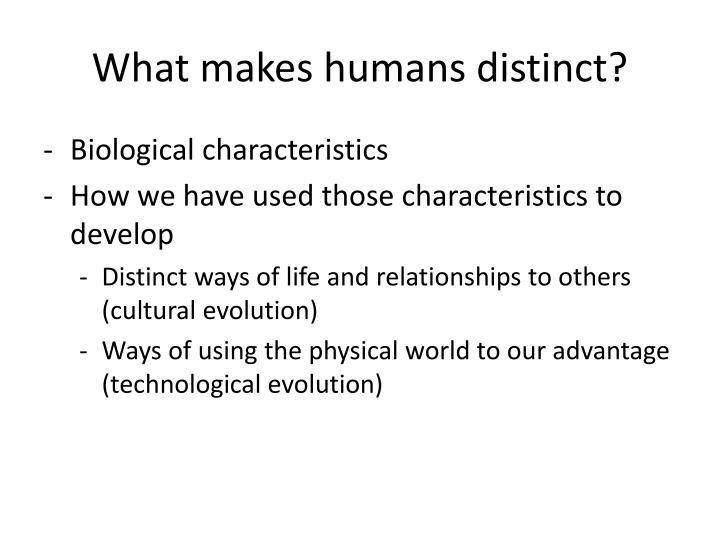 What makes humans distinct?