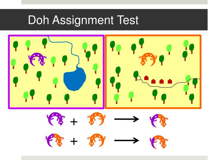 Doh Assignment Test