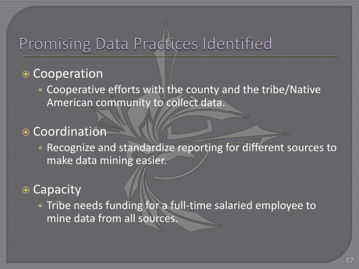 Promising Data Practices Identified