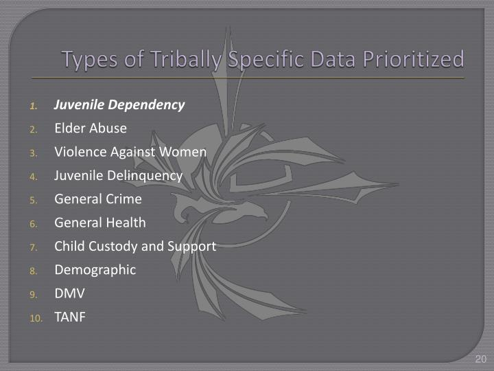 Types of Tribally Specific Data Prioritized