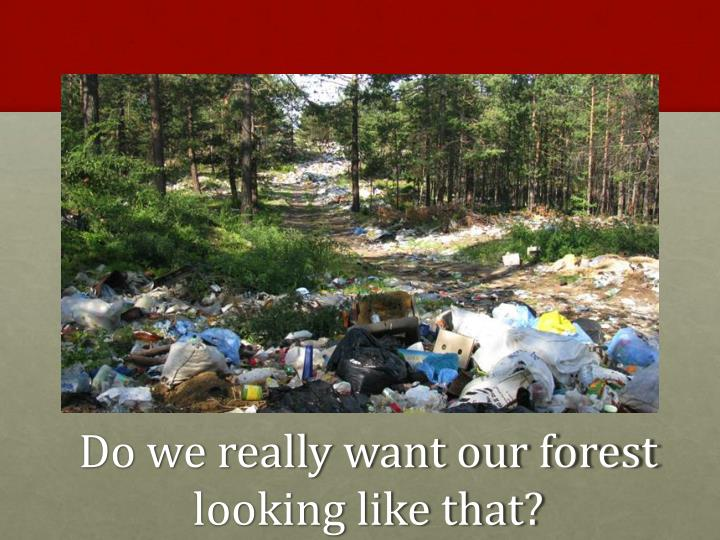 Do we really want our forest looking like that?