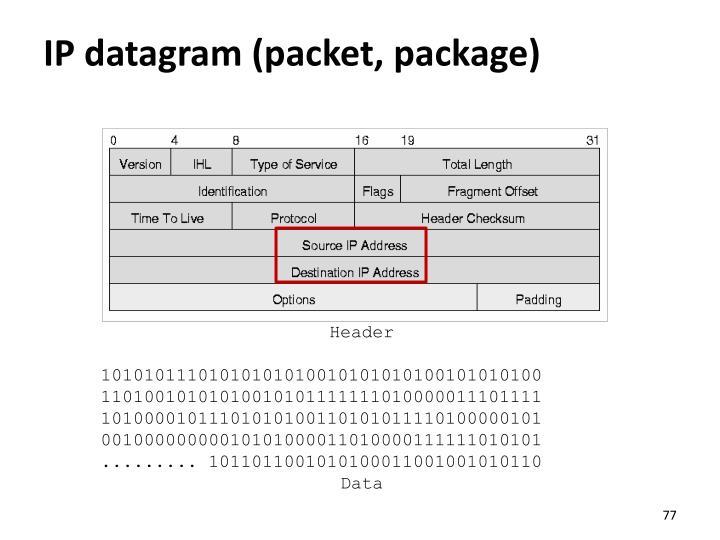 IP datagram (packet, package)
