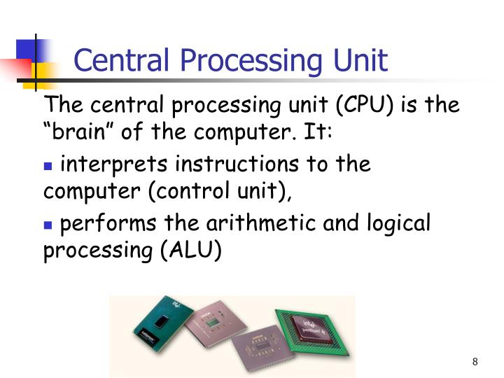 Central Processing Unit