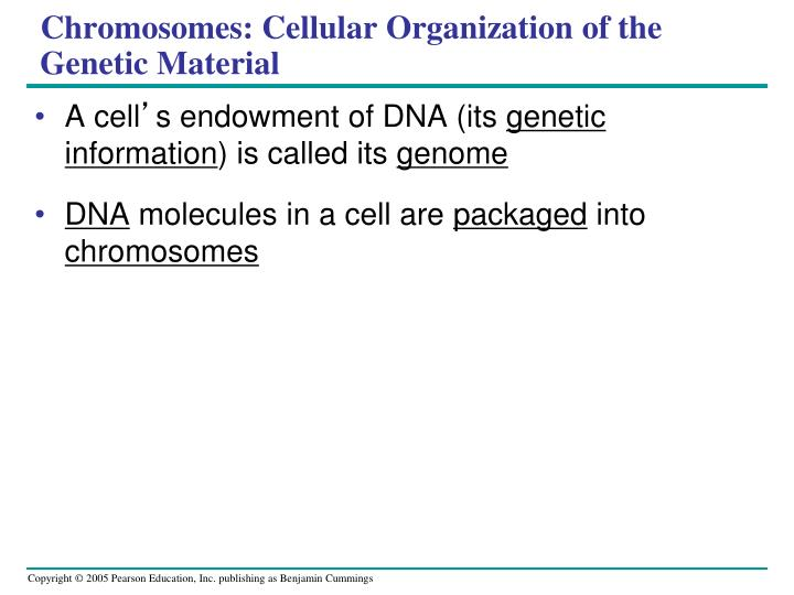 Chromosomes: Cellular