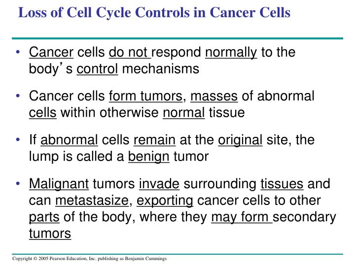 Loss of Cell Cycle Controls in Cancer Cells