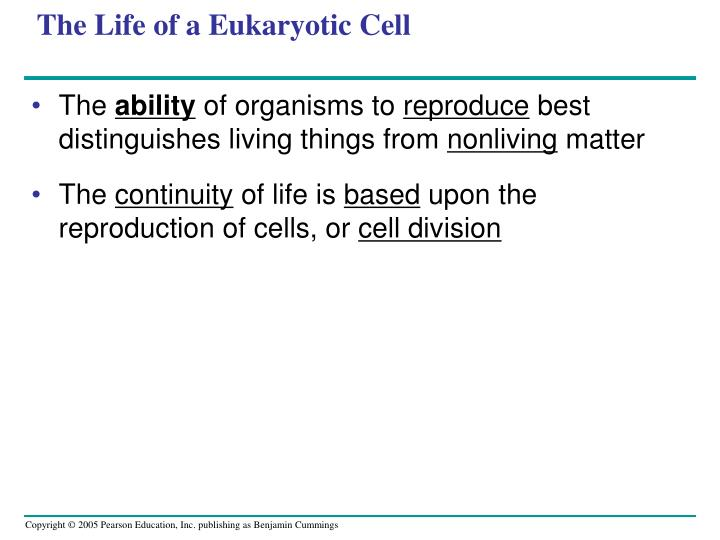 The life of a eukaryotic cell