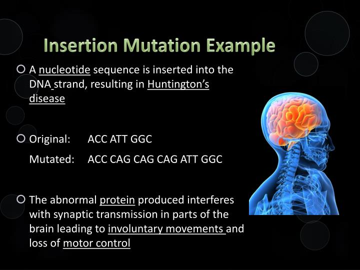 Insertion Mutation Example