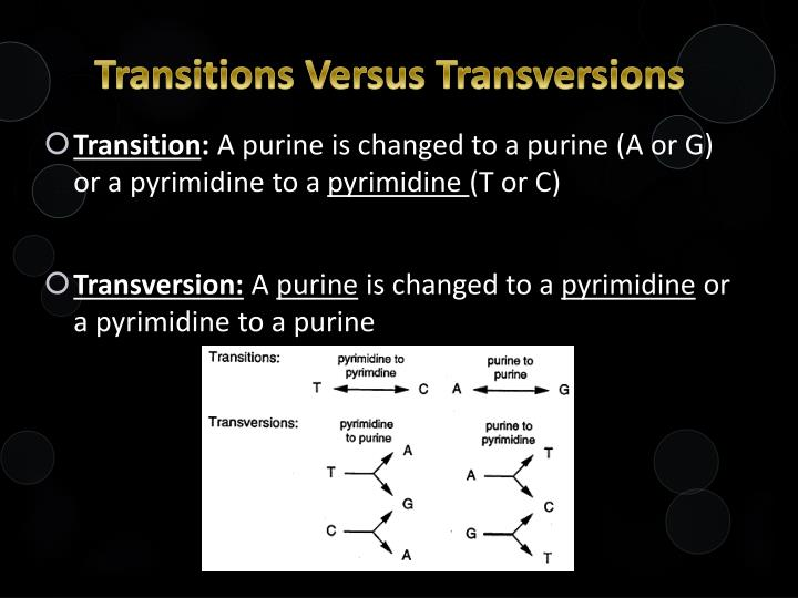 Transitions Versus