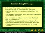 freedom brought changes