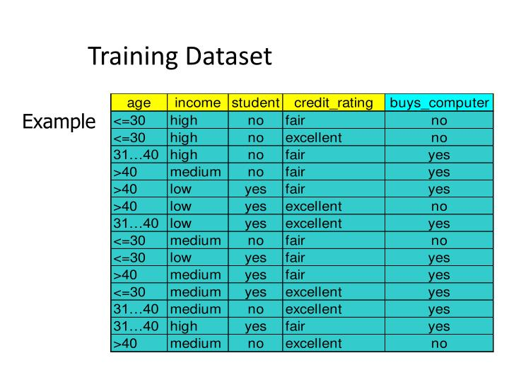Training dataset