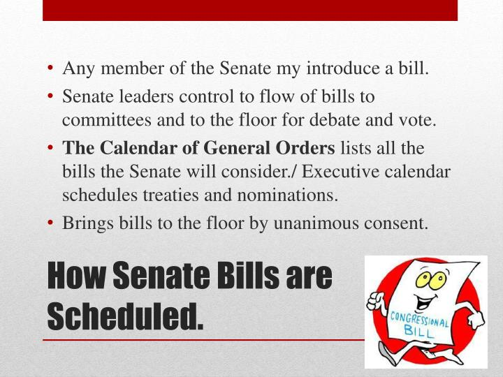 Any member of the Senate my introduce a bill.