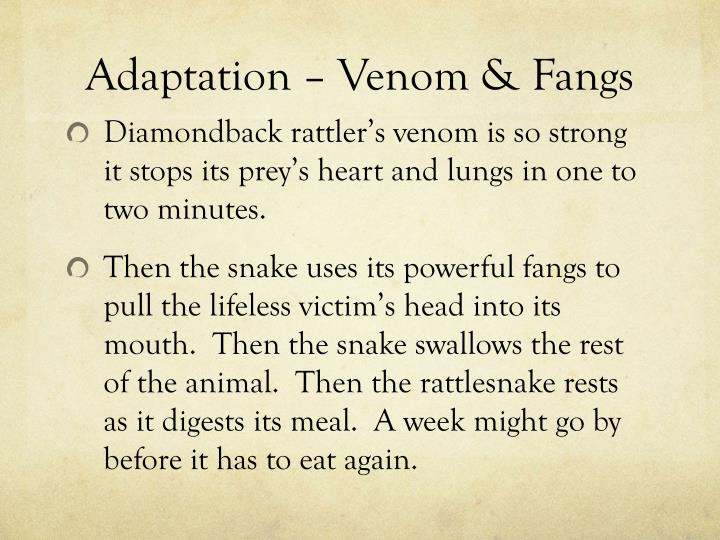 Adaptation – Venom & Fangs
