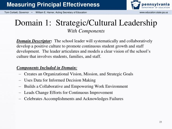 Domain 1:  Strategic/Cultural