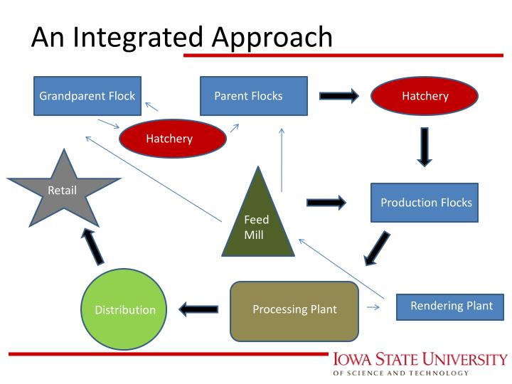An Integrated Approach